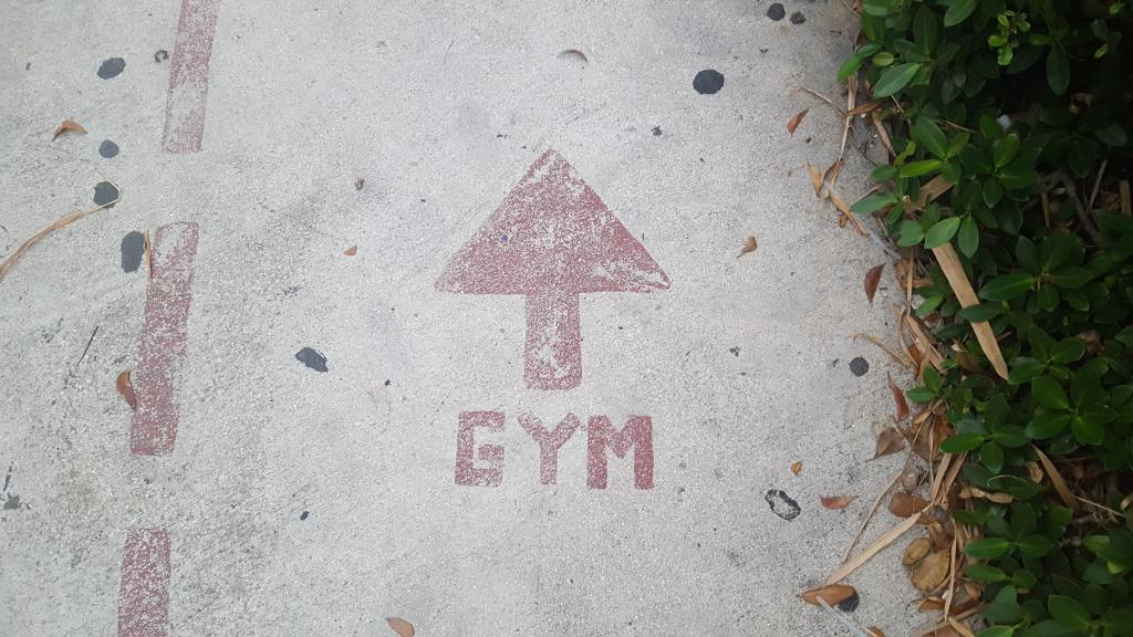 Close up of a pavement painted with a red sign reading 'Gym' in capital letters beneath a red arrow, with vegetation growing at the side.