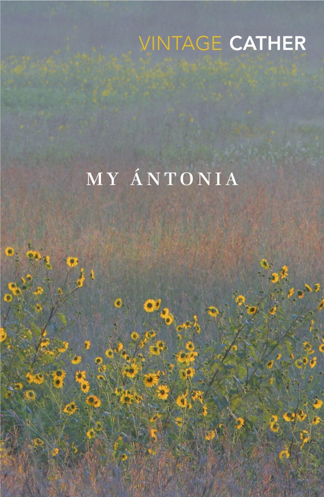Cover of the Vintage edition of My Antonia by WIlla Cather, with yellow flowers growing out of tall prairie grass.